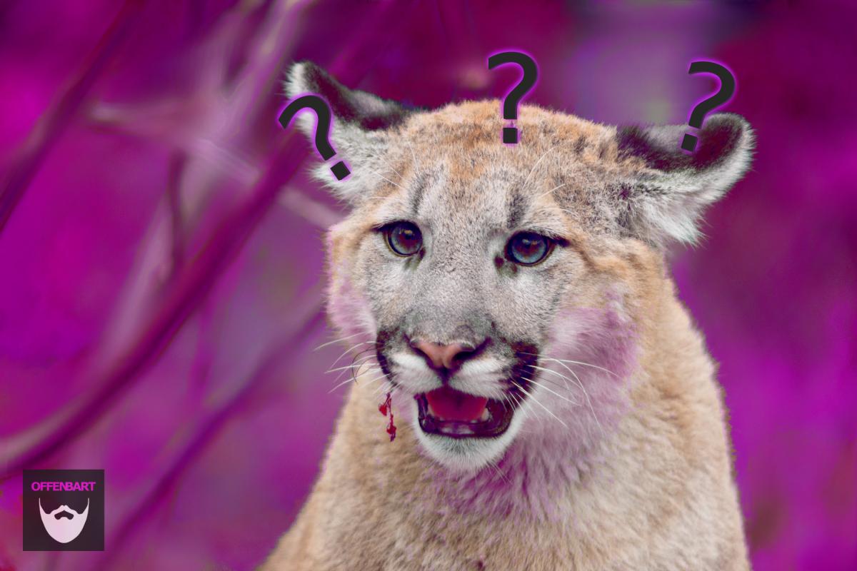 Bildnachweis: Cougar Ears Out by Eric Kilby CC-BY-SA 2.0, bearbeitet von Simon Mallow.