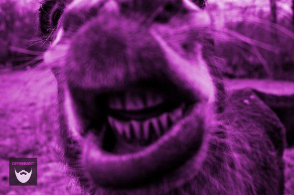 Bildnachweis: Cheering Up by Daniel Fazio Unsplash.com License, bearbeitet von Simon Mallow.