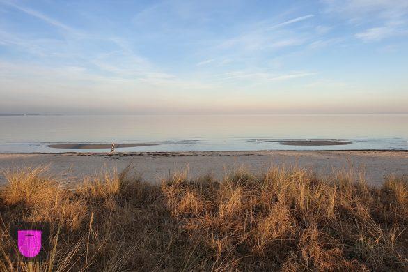 Bildnachweis: The baltic sea late in the evening by Serhat Köylüce Unsplash.com License, bearbeitet von Lukas Klette.
